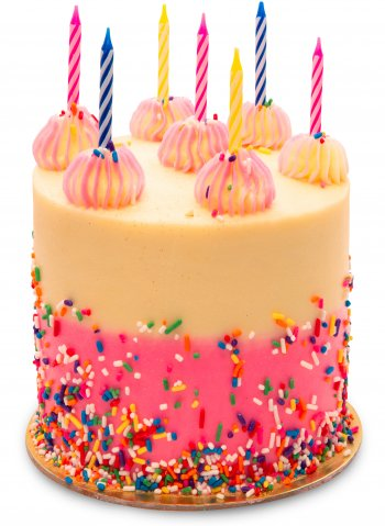 Pink Sprinkle Birthday Cake