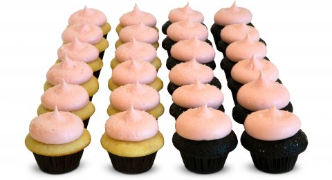 Pink Party Mini Cupcakes