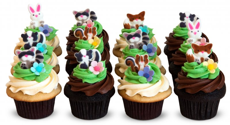 Woodland (bunnies, raccoons, squirrels and skunks) cupcakes