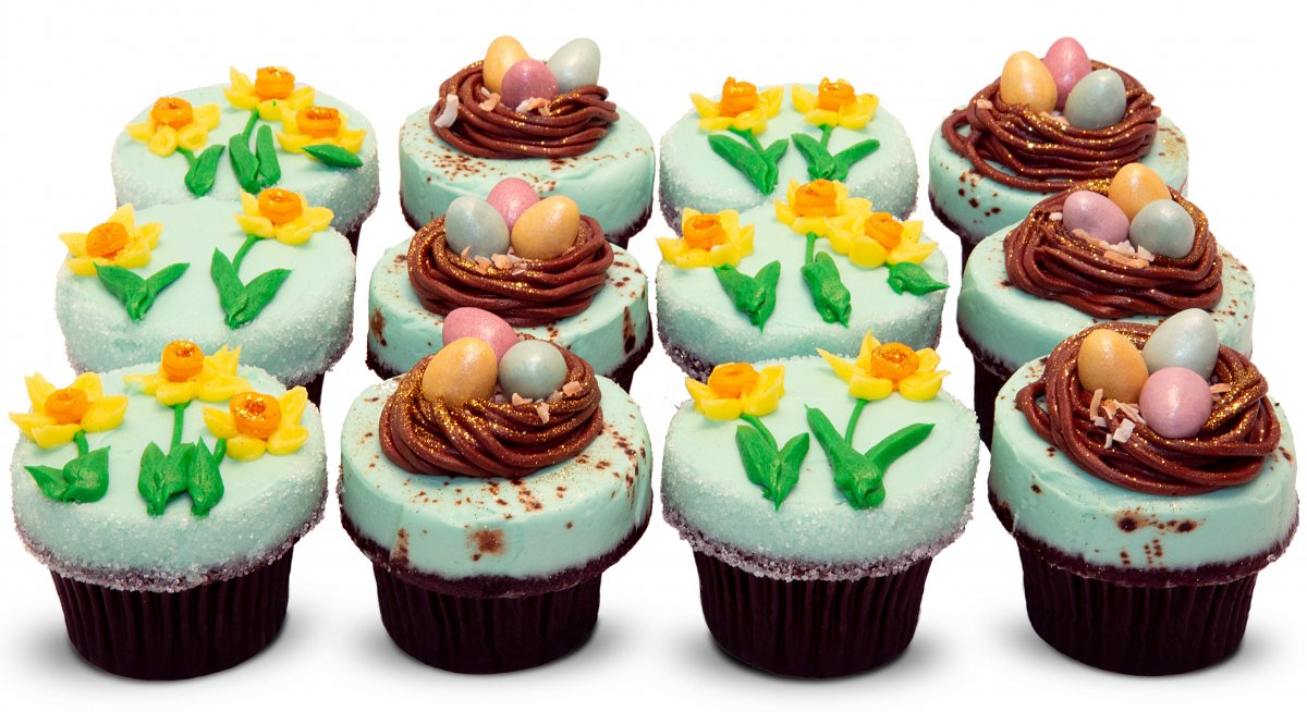 Spring Lux Cupcakes with robin's nests and daffodils.
